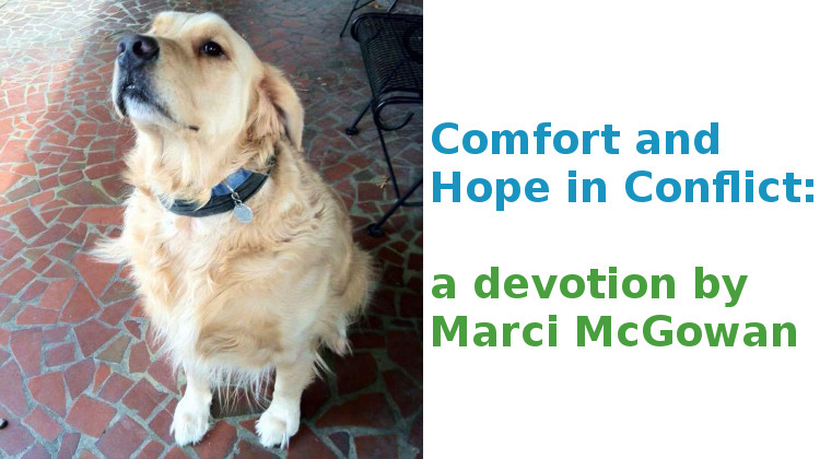 Comfort and Hope in Conflict:   a devotion by Marci McGowan