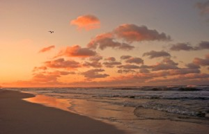 photo of a beach at sunset