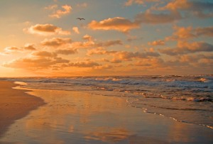 photo of waves on seashore at sunset