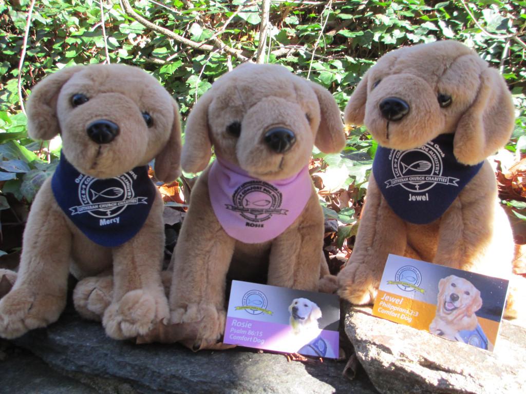 comfort dogs MMc Mercy, Rosie, and Jewel